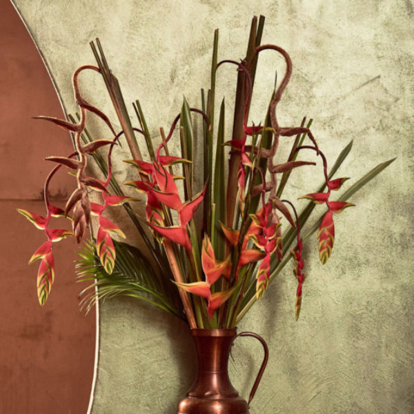FlowerArgentina